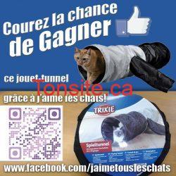 Concours J'aime les chats : gagnez un jouet Tunnel!