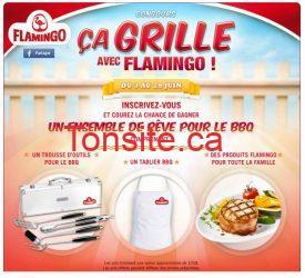 Ensemble de rêve pour le BBQ avec Flamingo!