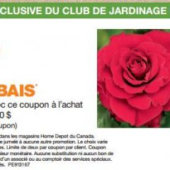 Coupon rabais imprimable de Home Depot pour les roses!