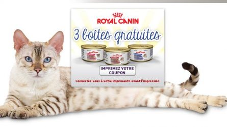 Coupons pour 3 boîtes Royal Canin GRATUITES