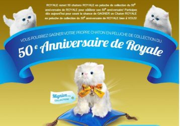 549 565268603519044 411306748 n - Gagner un peluches de Chaton ROYALE !
