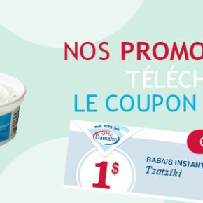 banniere promo coupon rabais tzatziki2013 290x290 - 3 coupon rabais imprimable de 1 $ sur les produits Damafro !