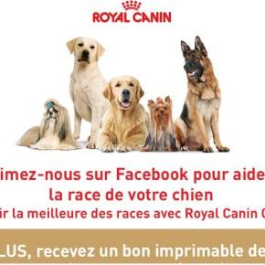 royal canin coupon rabais 290x290 - Coupon de 10$ sur la formule pour chiens Royal Canin Breed Health Nutrition!