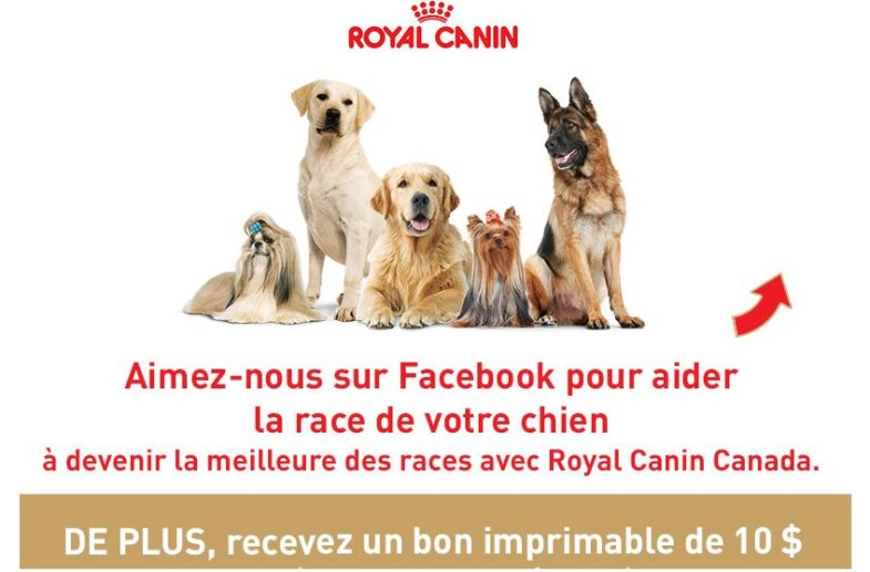 royal canin coupon rabais 785x517 - Coupon de 10$ sur la formule pour chiens Royal Canin Breed Health Nutrition!