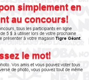 tigregeant 290x261 - Concours Tigre géant : Gagnez une carte-cadeau Tigre Géant de 250 $
