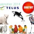 telus calendrier 120x120 - Calendrier Telus 2014 Gratuit!