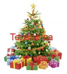 sapin - IKEA: Achetez un sapin naturel de Noël à 20$ et recevez un bon de réduction de 20$