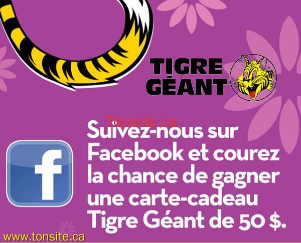 tigregeant concours1 - Concours Tigre Géant: Inscrivez-vous et gagner 1 des 20 cartes-cadeaux de 50$!