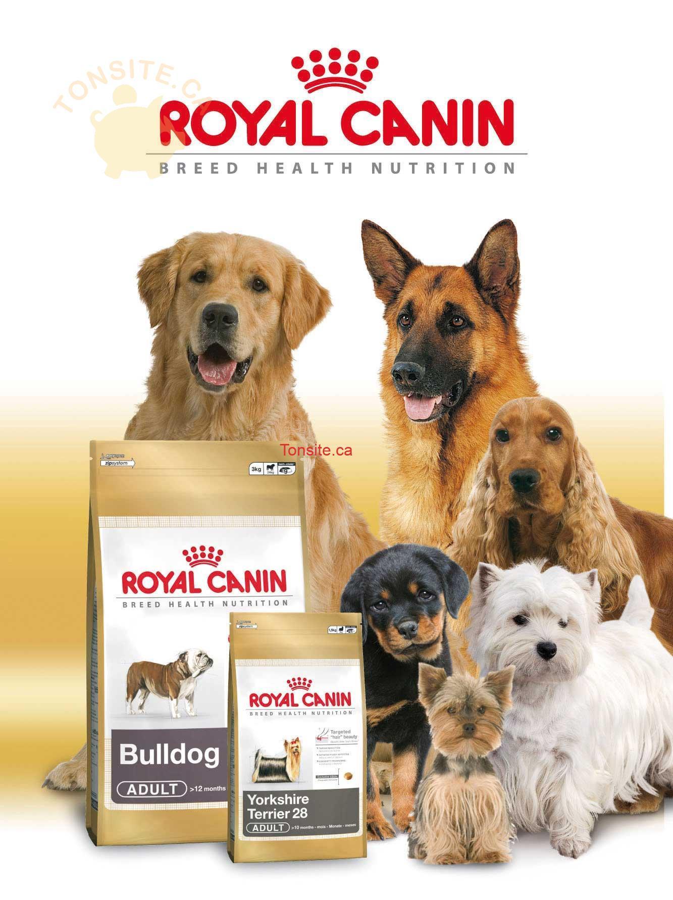royal canin - GRATUIT: Obtenez un échantillon de nourriture pour chiens Royal Canin gratuit et un bon rabais de 5$
