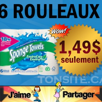 SPONGE TOWELS 149 JPG 350x350 - 6 rouleaux d'essuie-tout Sponge Towels à 1,49$ après coupon