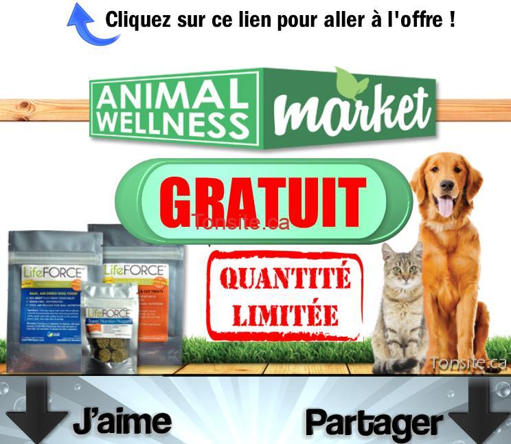 ANIMAL WELLNESS FREE - Gratuit: Obtenez un kit de 3 sacs de nourriture pour chien ou chat Animal Wellness