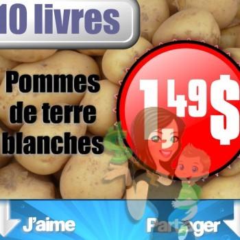 pommes de terre 1 49 jpg 350x350 - Sac de pommes de terre blanches 10 lb à 1,49$ seulement!