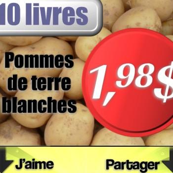 pommes de terre 1 98 350x350 - Sac de pommes de terre blanches 10 lb ou pommes de terre au four en emballage de 4 à 1,98$ seulement!
