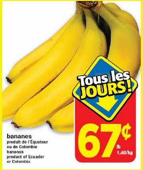 Bananes 67 295x350 - Bananes gratuits + 8¢ dans vos poches!