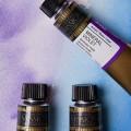 MIJELLO 120x120 - Obtenez 2 tubes de peinture à l'eau GRATUITEMENT!