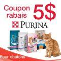 Coupon rabais de 5$ sur un sac de 1,6 kg ou plus de nourriture sèche pour chatons de marque Purina au choix