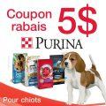Coupon rabais de 5$ sur un sac de 1,6 kg ou plus de nourriture sèche pour chiots de marque Purina au choix