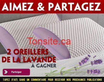 oreillers lavande concours - Participez pour gagner 2 oreillers de la lavande