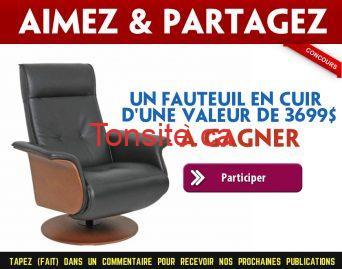 fjords concours - Un fauteuil en cuir FJORDS de 3699$ à gagner