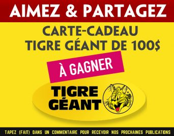 tigre-geant-concours-100