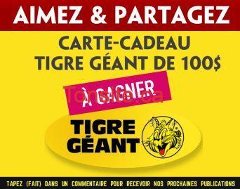 tigre geant concours 100 - Gagnez une carte-cadeau Tigre Géant de 100$