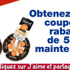 natrel coupon 50c 240x240 - Obtenez un coupon rabais de 50¢ sur le fromage cheddar Natrel sans lactose (6x20g)