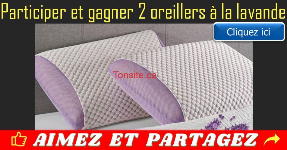 oreillers lavande concours2 - Participez et gagner 2 oreillers de la lavande