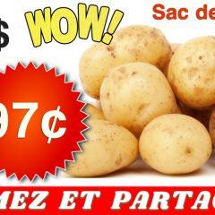 pommes de terre 97 499 240x240 - Sac de pommes de terre de 10 livres à 97¢ au lieu de 4,99$ (sans coupon)
