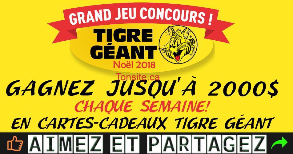 tigre geant concours noel 2018 - Concours de Noël 2018 de Tigre Géant: Gagnez jusqu'à 2000$ par semaine! en cartes-cadeaux