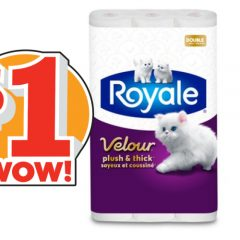 royale velour coupon 1 240x240 - Coupon rabais de 1$ sur tout emballage de Velour de ROYALE