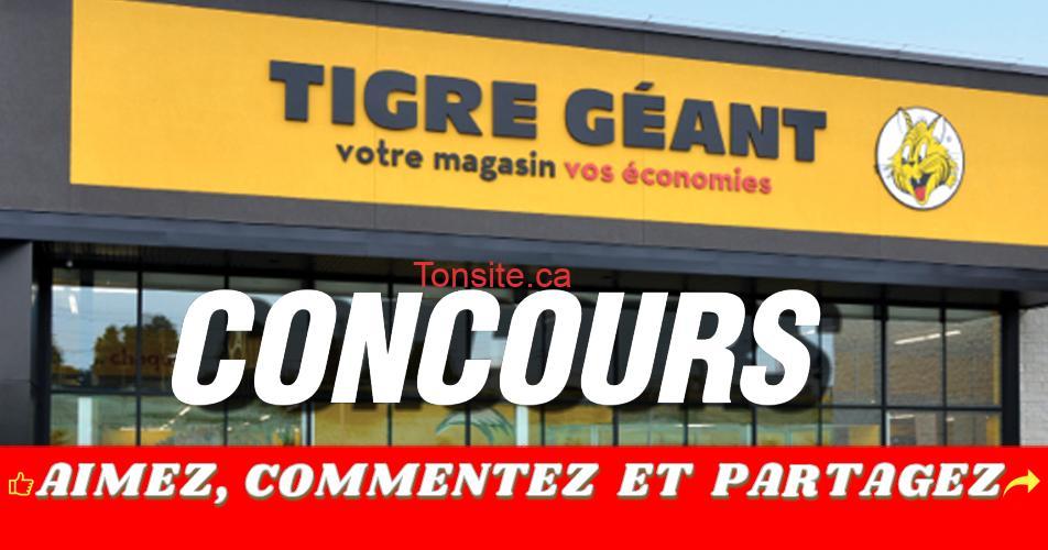 tigre geant concours off - Concours Tigre Géant: Gagnez une carte-cadeau de 100$