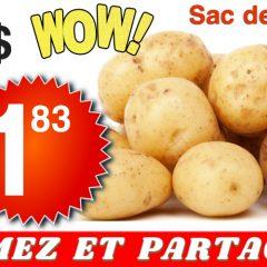 patates 183 499 240x240 - Sac de pommes de terre (10 livres) à 1,83$ au lieu de 4,99$