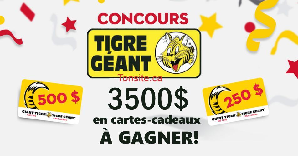 tigre geant concours - Concours Tigre Géant: 3500$ en cartes-cadeaux à gagner!