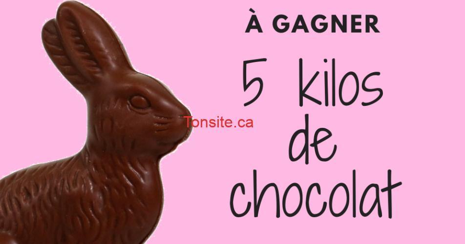 chocolat 5 kilos concours - Gagnez votre gigantesque lapin en chocolat de 5 kilos pour pâques!